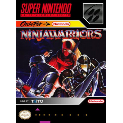 Ninja Warriors, The